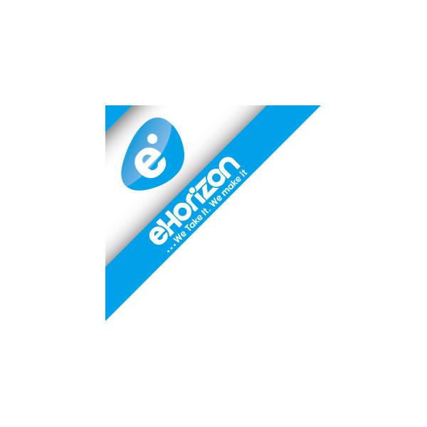 ehorizon electronic solutions llc