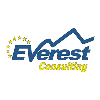 everest consulting
