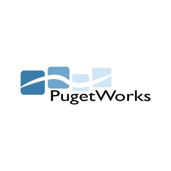 pugetworks inc.