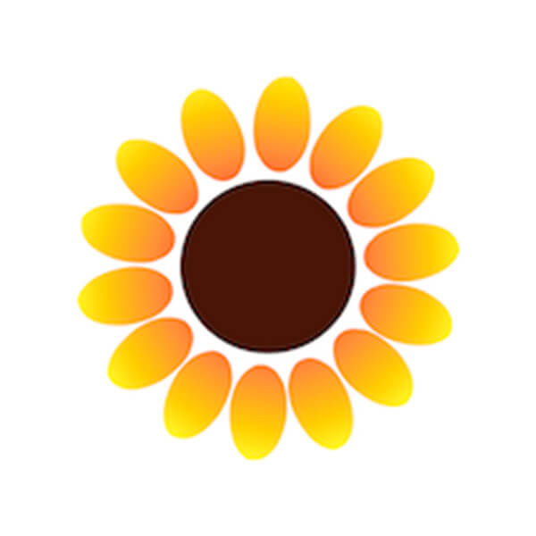 sunflower lab