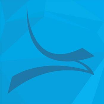 sayenko design