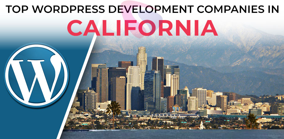 wordpress development companies california