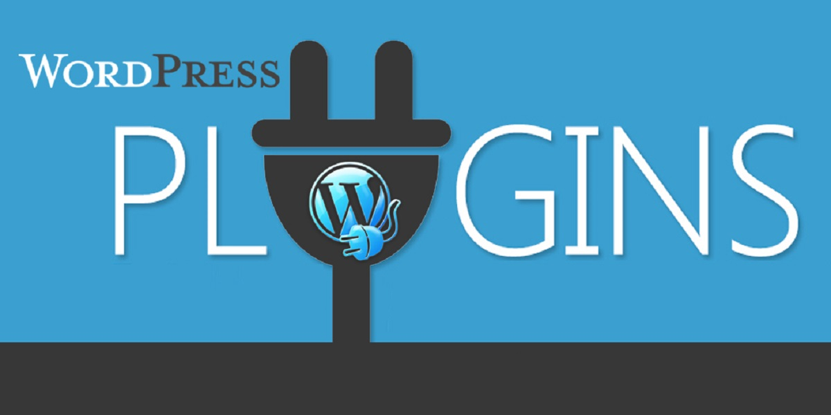 wordpress website with plugins